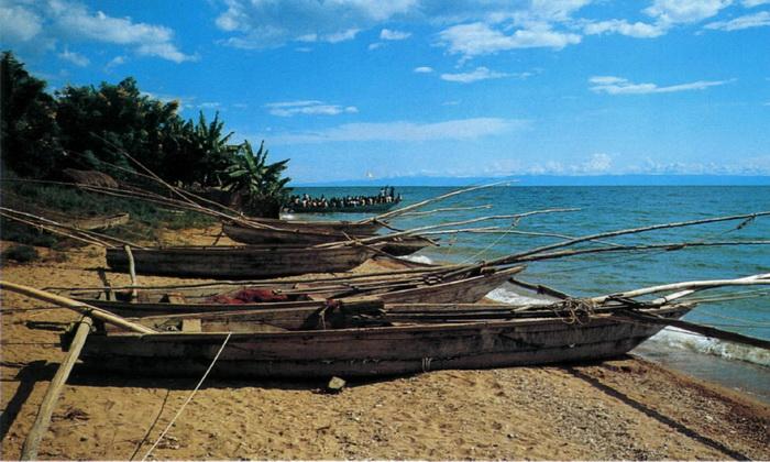 фото берега нила